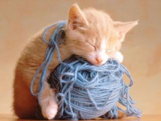 Миниатюра к статье Вязание спицами - практичный вид рукоделия