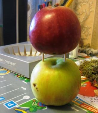 соединить яблоки