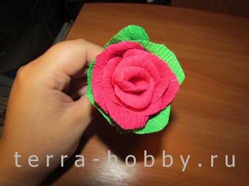 роза из бумаги 19