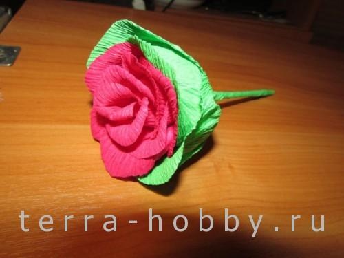 роза из гофрированной бумаги, мастер-класс