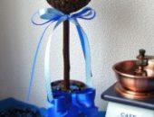 Миниатюра к статье Кофейное дерево своими руками